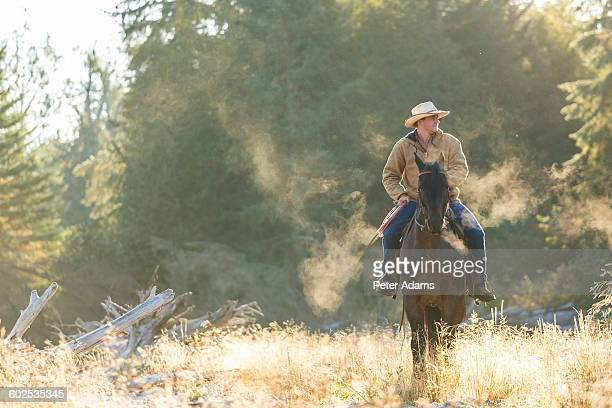 Cowboy riding his horse in Canadian mountains