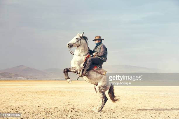 cowboy riding horses. prancing horse - horse stock pictures, royalty-free photos & images