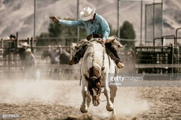 a cowboy riding on a bucking horse during the saddle bronc competition. - bucking stock photos and pictures
