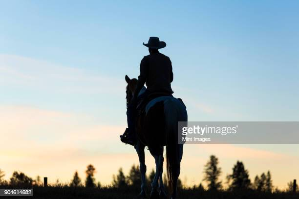 cowboy riding on horseback in a prairie landscape at sunset. - cowboy stock pictures, royalty-free photos & images