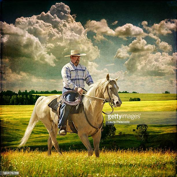 cowboy riding tennessee walker horse in a meadow - meadow walker stock pictures, royalty-free photos & images