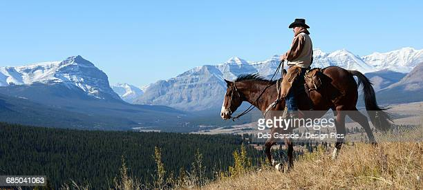 Cowboy riding with a view of the Rocky mountains, Ya-Ha-Tinda Ranch, Clearwater County