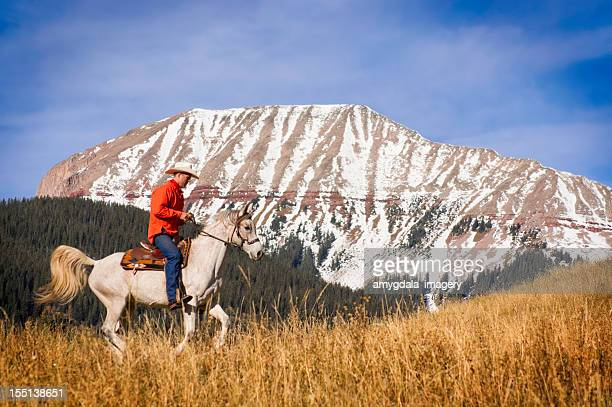 cowboy rocky mountain landscape