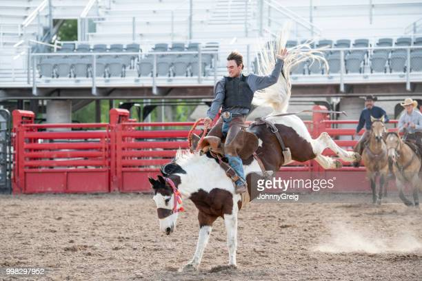 cowboy rodeo riding bucking bronco horse in western usa - idaho stock pictures, royalty-free photos & images