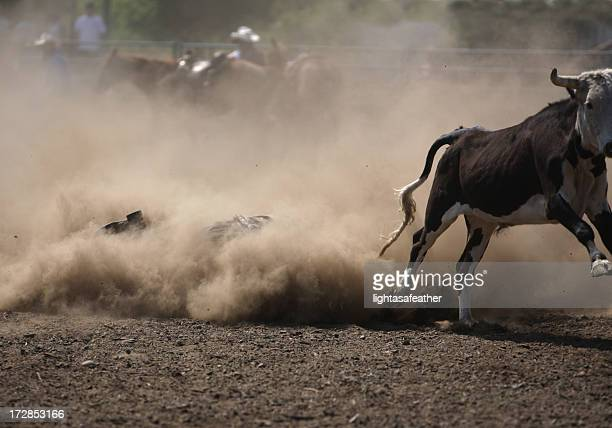 Cowboy Rodeo Wrestler in the Dust