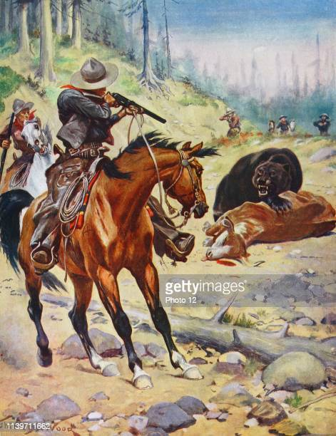 Cowboy shoots a grizzly bear which has killed a steer 1875