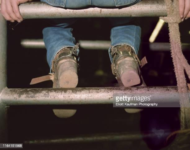 cowboy sitting in the rodeo ring gate - houston rodeo stockfoto's en -beelden