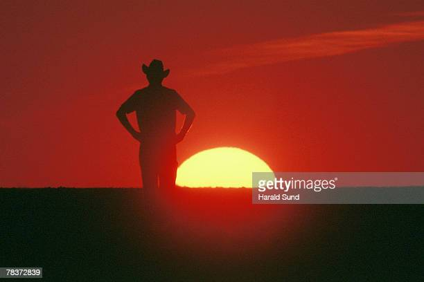Cowboy standing in field at sunset