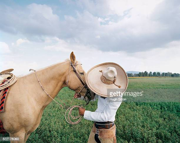 cowboy talking to his palomino horse - hugh sitton stock pictures, royalty-free photos & images