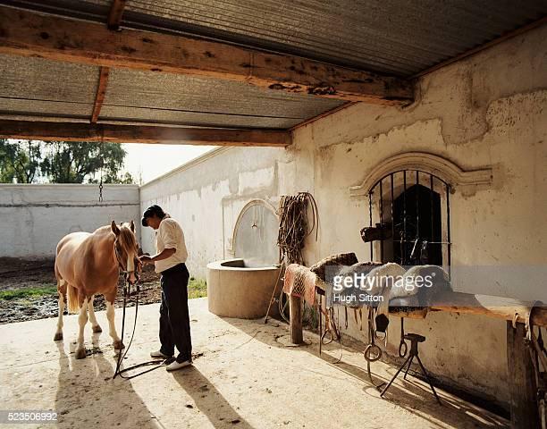 cowboy with horse, cachi, salta, argentina - hugh sitton - fotografias e filmes do acervo
