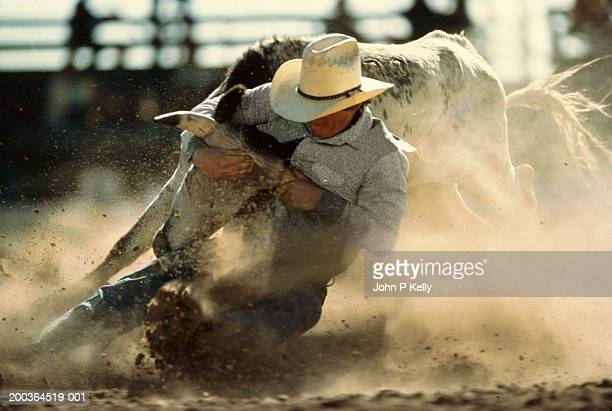 Cowboy wrestling a steer in a rodeo ring, close-up