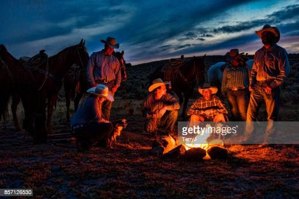 cowboys en cowgirls verzamelen rond een kampvuur in een open bereik met hun paarden en honden - cowboy stockfoto's en -beelden