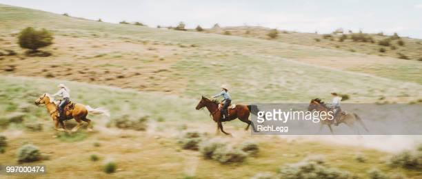 Cowboys and Cowgirls on Horses