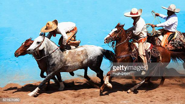 cowboys at rodeo - hugh sitton stock pictures, royalty-free photos & images