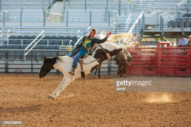 cowboys competing in the bucking bronco event at a rodeo - bronco stadium stock pictures, royalty-free photos & images