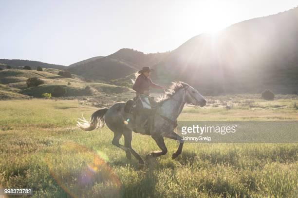 cow-girl, galopant à cheval dans la vallée de l'utah usa - cowgirl photos et images de collection