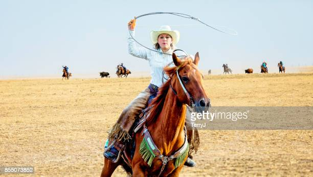 Cowgirl gets ready to lasso a bull while running her horse while others do the same