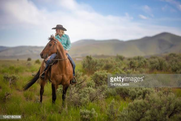 cowgirl horseback riding - horseback riding stock pictures, royalty-free photos & images