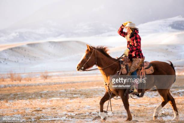 cowgirl on a horse in absaroka mountains - cowgirl hairstyles stock photos and pictures