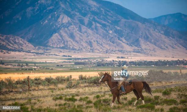 cowgirl on horseback looks at open range in utah