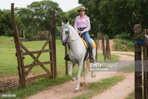 農場のゲートに馬に乗って騎乗位 - バウンサー ストックフォトと画像
