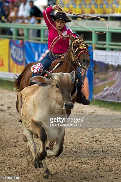 A cowgirl ropes a calf during the 6th Cowgirl World Championship in Villavicencio Meta department Colombia on March 18 2012 Competitors from Colombia...