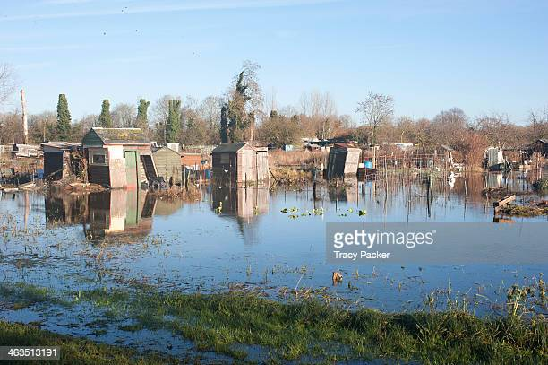 CONTENT] Cowmead Allotments under floodwater Abingdon Road Oxford January 14th 2014 Abingdon Road a main arterial route into Oxford city centre from...