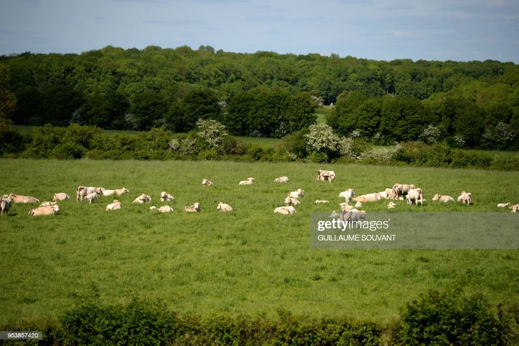 FRANCE-AGRICULTURE : News Photo