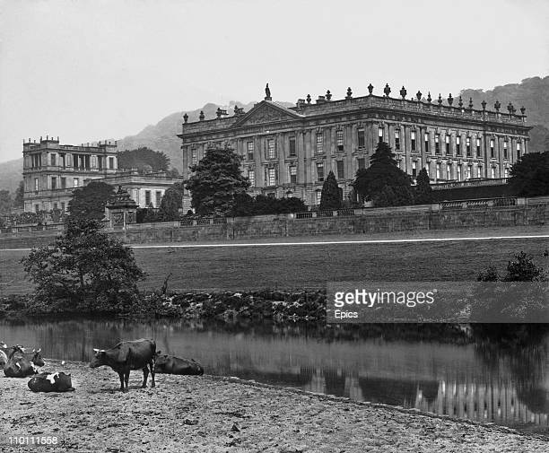 Cows graze in view of Chatsworth House stately home, Derbyshire, England, circa 1900.