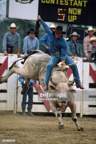 Cowtown Bull Rider
