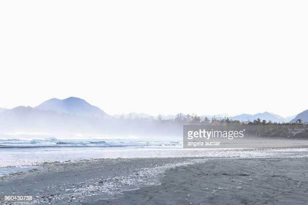 Cox Bay in Tofino, British Columbia