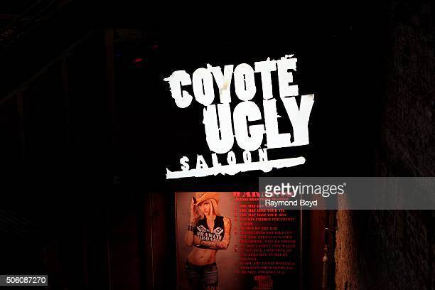 Coyote Ugly on December 31 2015 in Nashville Tennessee