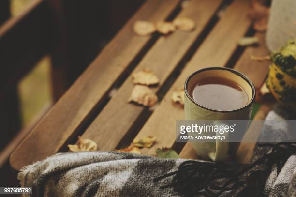 cozy autumn morning at country house, cup of tea and warm blanket on wooden table