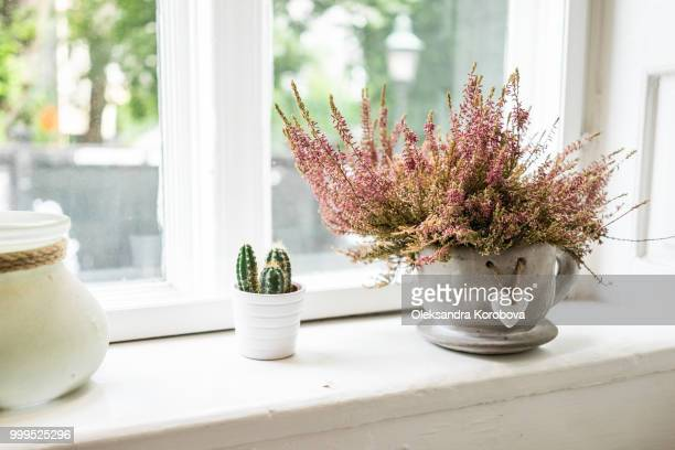 Cozy Danish coffeeshop. Small plants decorating the window sill on a summer morning.