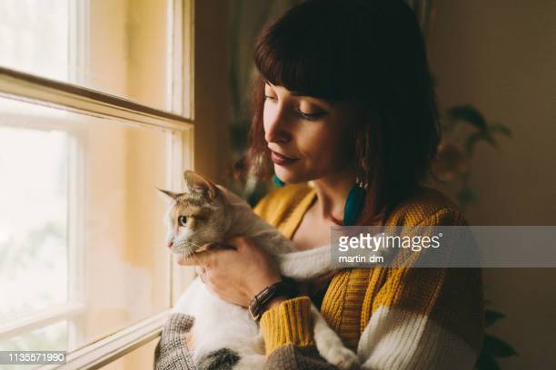 cozy home - cat family stock pictures, royalty-free photos & images