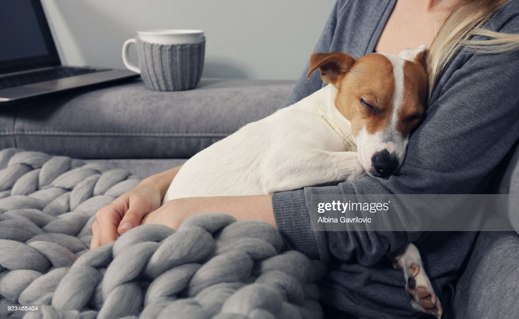 Cozy home, woman covered with warm blanket watching movie, hugging sleeping dog. Relax, carefree, comfort lifestyle. : Stock Photo