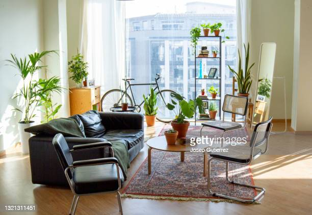 cozy living room at industrial loft open space - tidy room stock pictures, royalty-free photos & images