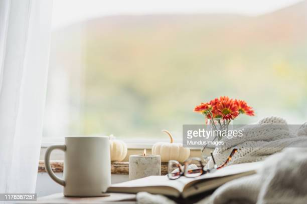 a cozy reading nook in the fall with a blanket and coffee - cosy stock pictures, royalty-free photos & images