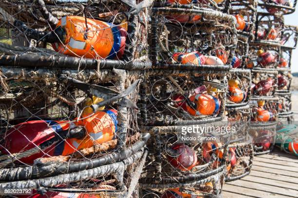 crab fishing cages drying on the dock - crab pot stock photos and pictures