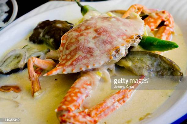 crab in coconut sauce - coconut crab stock pictures, royalty-free photos & images