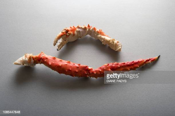 crab leg & claw - crab leg stock photos and pictures