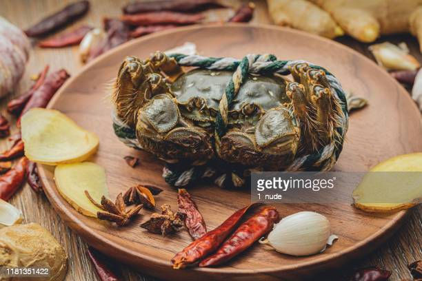 crab marcophotography - raw food diet stock pictures, royalty-free photos & images
