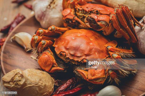 World S Best Chinese Mitten Crab Stock Pictures Photos And