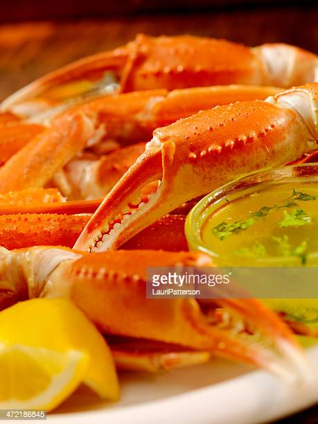crab - crab leg stock photos and pictures