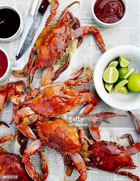 crabs on table - crab stock pictures, royalty-free photos & images