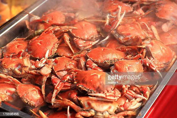 crabs - crab stock pictures, royalty-free photos & images