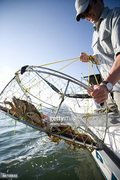 crabtrap - crab pot stock photos and pictures