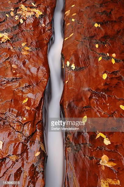Crack in bedrock, Zion National Park, Utah