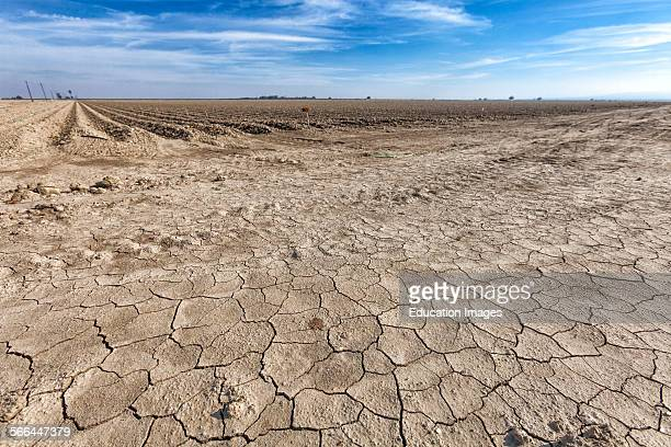 Cracked and dry earth next to fallow crop field Fresno County San Joachin Valley California