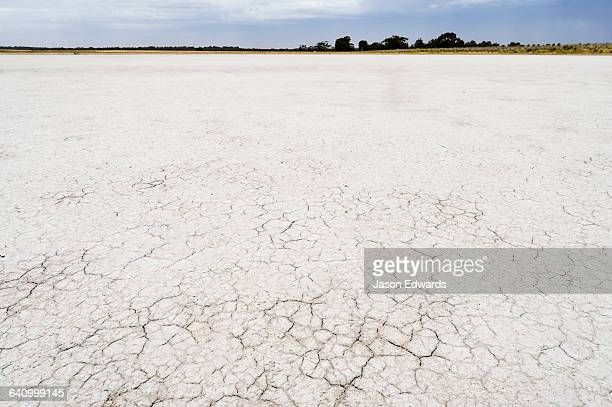 Cracked dry salt on the lake bed on a farm.